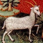 goat of capricorn